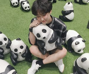ulzzang, boy, and panda image
