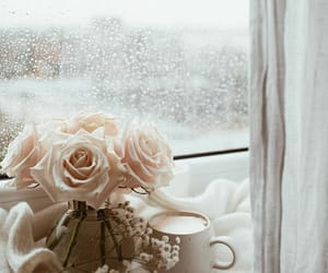 rose, flowers, and coffee image