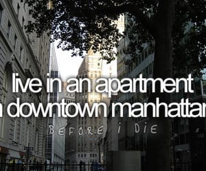 manhattan, before i die, and new york image