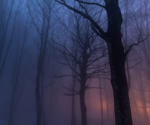 colors, creepy, and trees image