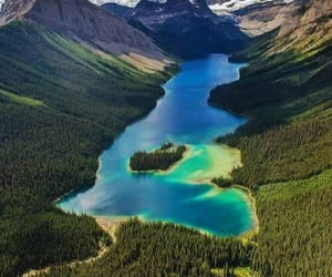 canada, nature, and beautiful image