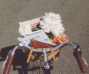 flowers, bike, and book image