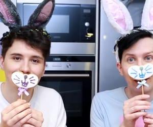 baking, bunny, and dan image