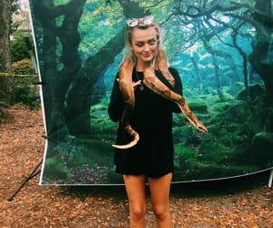 aesthetic, snake, and tumblr girl image