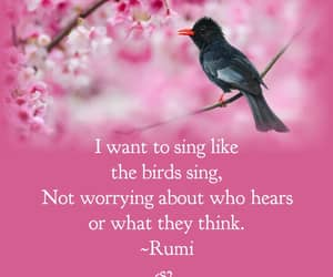 quote, Rumi, and world image