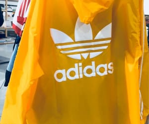 adidas, bright, and clothes image