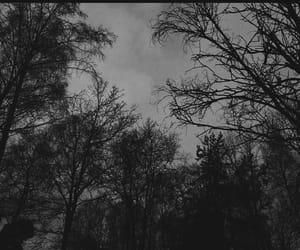 black and white, bw, and dark image