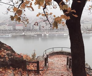 budapest, city, and danube image