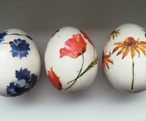 easter, swieta, and eggs image