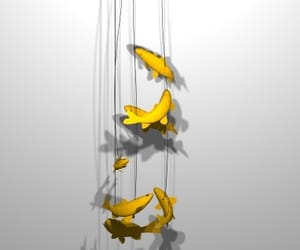concept, fish, and hanging lights image
