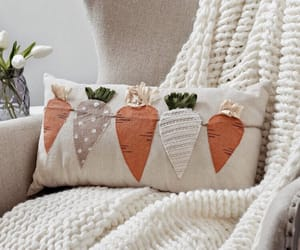 blanket, carrot, and cozy image