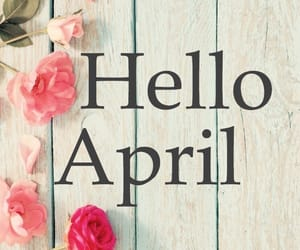 april, hello, and pink flowers image