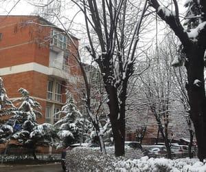 snow, white, and prishtina image