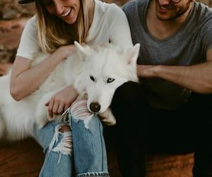 animal, love, and couple image