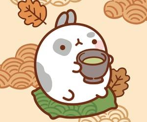 animal, molang, and bunny image