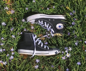 aesthetic, flowers, and converse image