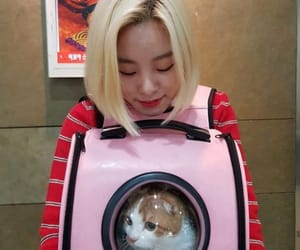mamamoo, cat, and wheein image