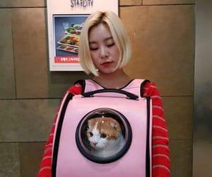 mamamoo, wheein, and cat image