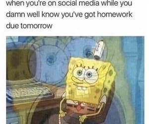 meme, school, and spongebob image