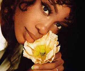 sza, flower, and music image