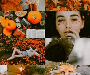 aesthetic, autumn girl, and gif image