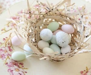 easter and spring image