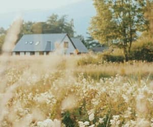 house, aesthetic, and nature image