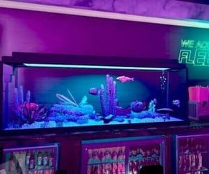 aesthetic, aquarium, and blue image