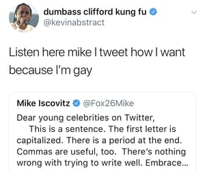 funny, gay, and tweets image