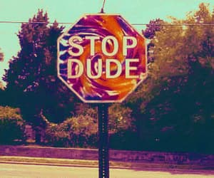 stop and dude image