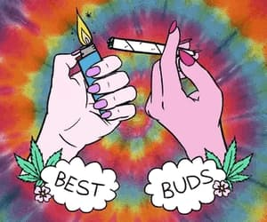 weed, smoke, and bud image