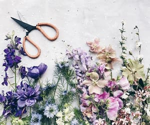bouquet, flower, and wildflowers image