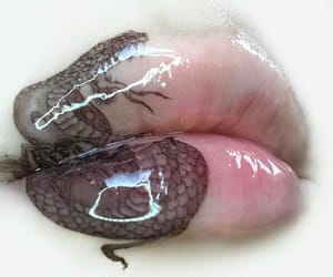 lips, glossy, and snake image