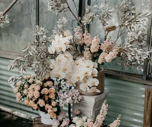 classy, flowers, and nature image