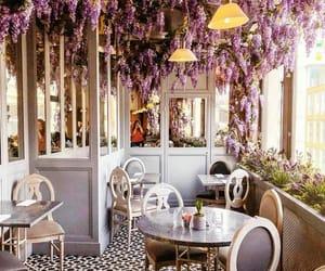 bar, beautiful, and cafe image