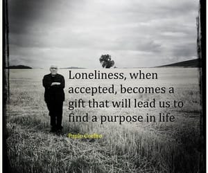 accept, coelho, and gift image
