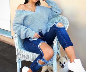 clothes, outfit, and dog image