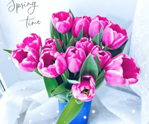 beauty, bouquet, and spring image
