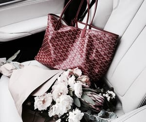 flowers, red, and accessories image