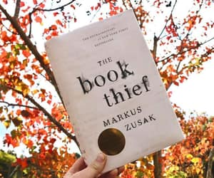 bibliophile, book, and bookish image
