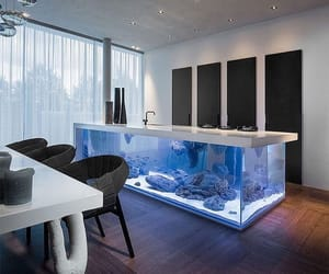 kitchen, design, and aquarium image