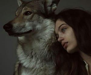 girl and animal image