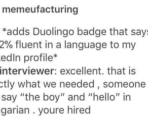 funny, language, and tumblr image