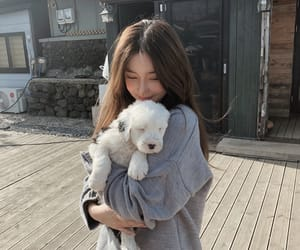 ulzzang, dog, and girl image