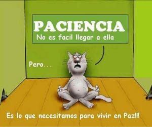 frases and paciencia image