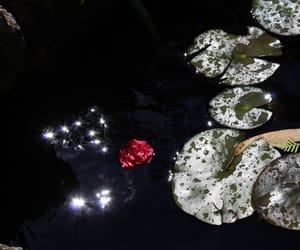 light, paradise, and mine image