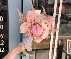 aesthetic, minimal, and flowers image