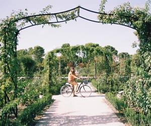 35 mm, bikes, and parque del retiro image