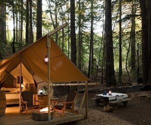 camp, forest, and nature image