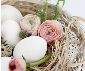 easter, eggs, and roses image